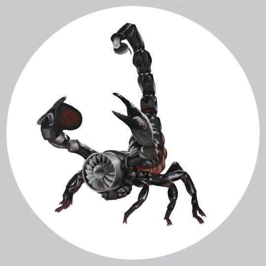 Scorpion - Ottis