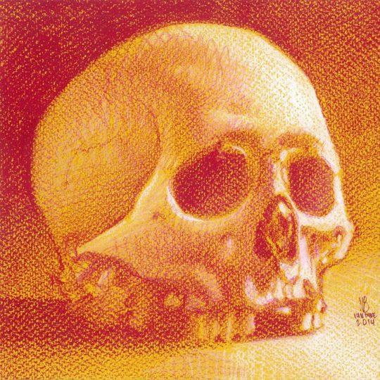 Skull Study (China Marker)