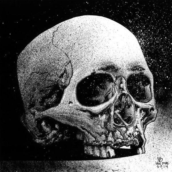 Skull Study (Ink)